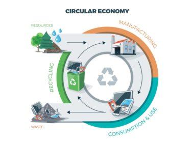 Циклическая экономика устойчивые практики Circular and Linear Economy