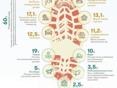 Экологический след человека - след ботинка