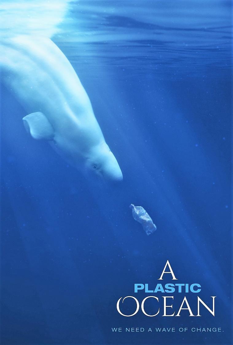 Пластиковый океан A plastic ocean