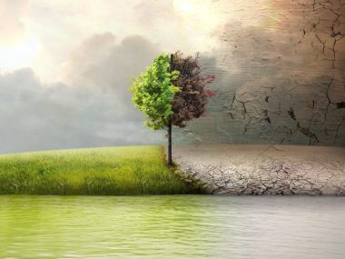 Спасти планету Before the flood