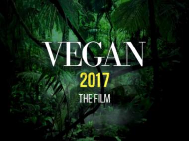Веган 2017