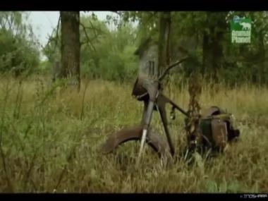 Чернобыль: Жизнь в смертельной зоне