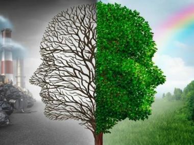 Время подумать об экологии
