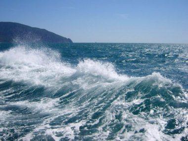 Шкатулка Черного моря