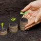 Как экологизировать компанию EcoDao ЭкоДао Экологичный Путь