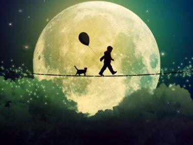 Я очень хочет быть в этом мире EcoDao Экологичный Путь
